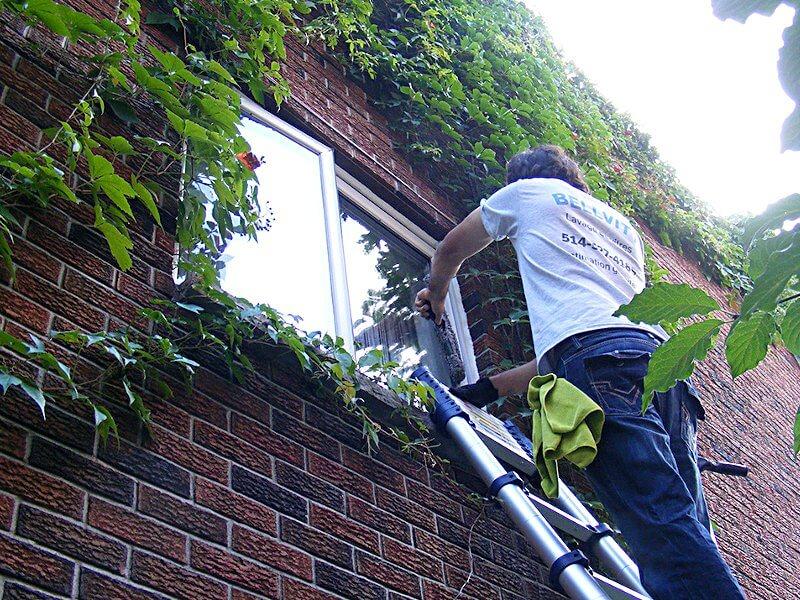 Lavage de vitres résidentiel